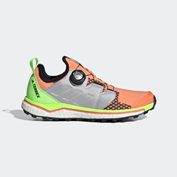 Adidas Terrex Terrex Agravic Boa W